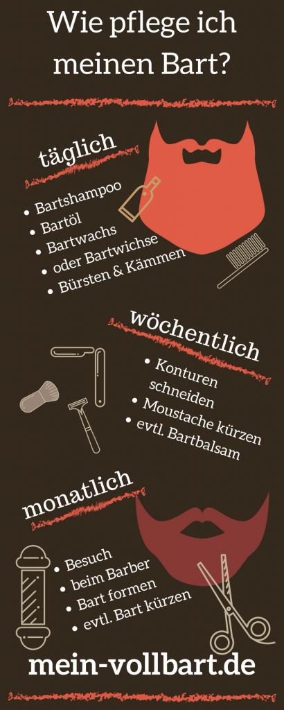 Infografik zur Frage Wie pflege ich meinen Bart auf mein-vollbart.de